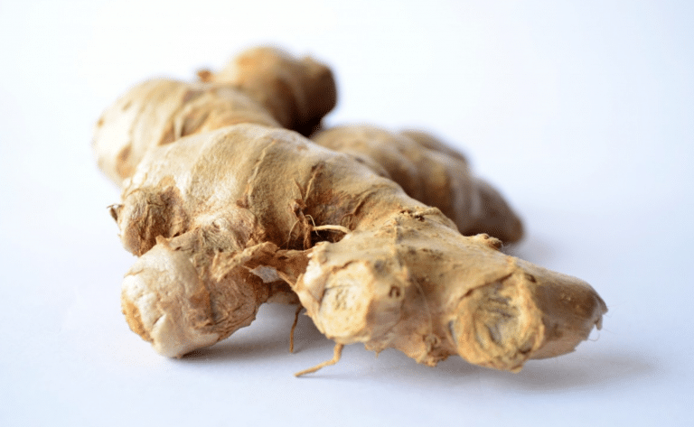 chinese herbs - ginger